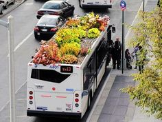 ecosystm – Green Roof for Buses