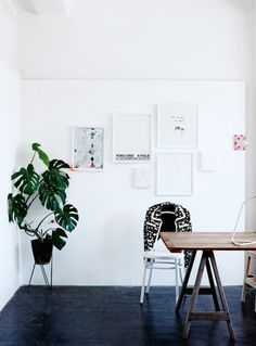 How plants can work in any interior style: Monstera Deliciosa are a popular choice in minimalist spaces like this artists studio in Melbourne.