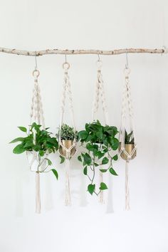 A macrame plant hanger, made form 100% natural cotton rope. Click to shop this macrame plant hanger on Etsy #etsy #indoorplants
