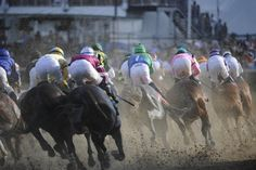 Kentucky Derby Photos | 2012 Kentucky Oaks & Derby | May 4 and 5, 2012 | Tickets, Events, News
