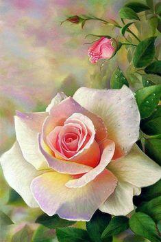 jpg 640 × 911 pixels is part of Rose painting - jpg 640 × 911 pixels Pixel Source by Arte Floral, Oil Painting Flowers, Watercolor Flowers, Rose Paintings, Cow Wall Art, Flower Pictures, Flower Wallpaper, Beautiful Roses, Pretty Flowers
