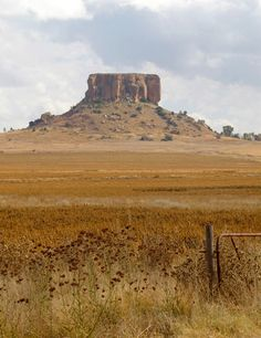 Yellow Hill 2012 by Liesel Wessels.  Photograph close to Fouriesburg, South Africa