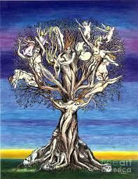 Image result for tree of life drawing