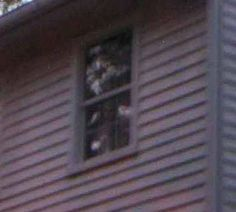 Caught this image during Stately Oaks Plantation Paranormal Investigation