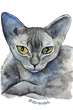 Cat illustration Cats, Illustration, Artist, Animals, Gatos, Animales, Animaux, Artists, Animal