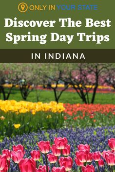 Discover the best places to go in the spring in Indiana! You'll find tulip gardens, wildflower hiking trails, historic villages, glamping resorts, waterfalls, and more! All make for perfect family friendly day trips.