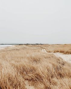 Nantucket coastline (With images) Landscape Photography, Nature Photography, Travel Photography, Nantucket, Beige Aesthetic, Photos Tumblr, The Great Outdoors, Places To Go, Beautiful Places