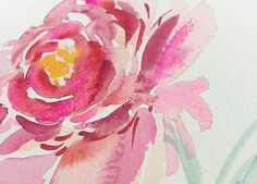 Raspberry Watercolor Peony