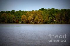 Title  Centennial Lake   Artist  Patti Whitten   Medium  Photograph - Photography