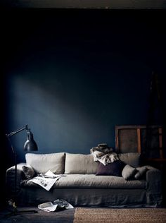 dark blue living room