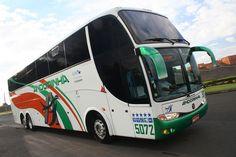 Viação Andorinha - Empresa e Ônibus | Turismo - Cultura Mix