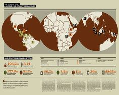 World Map of Coffee Flavours + Consumption Stats - Infographic design