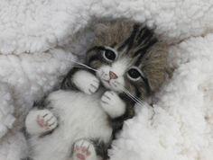 funwari■□■ 羊毛フェルト キジトラ白 赤ちゃん猫 ハンドメイド _画像1