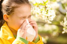 Skip giving your child kid medicine. A well respected compounding pharmacy serving patients in Santa Monica suggests that there are better alternative remedies Nose Bleeds, Natural Home Remedies, Your Child, Children, Kids, Medicine, Good Things, Couple Photos, Allergies