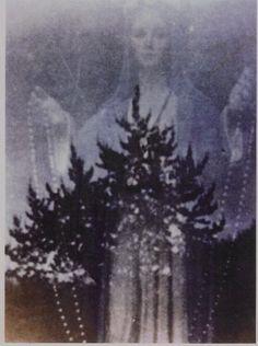 VIRGIN MARY OF MEDJUGORJE PHOTOGRAPH