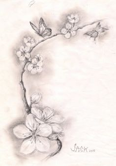 Black And White Cherry Blossom Tattoos 5 New Cherry Blossom Tattoo Designs Pretty Tattoos, Love Tattoos, Beautiful Tattoos, Tattoos For Guys, Tatoos, Side Tattoos Women, Star Tattoos, Tattoo Studio, Tattoo Salon