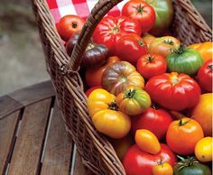 The Best Tomatoes to Grow Where You Live - Organic Gardening - MOTHER EARTH NEWS