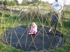 http://mistyhorizon2003.hubpages.com/hub/How-to-grow-your-child-a-living-den-or-playhouse
