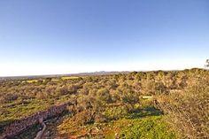Grundstücke auf Mallorca kaufen