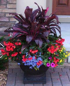 43 Enchanting Colorful Shade Garden Pots Ideas For Small Spaces 43 Enchanting Colorful Shad. Container Flowers, Flower Planters, Container Plants, Garden Planters, Flower Pots, Flower Ideas, Succulent Containers, Fall Planters, Balcony Garden