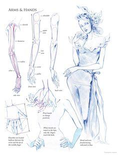 Fashion Illustration: Inspiration and Technique: Anna Kiper Illustration Techniques, Fashion Illustration Sketches, Fashion Sketches, Fashion Drawing Tutorial, Fashion Figure Drawing, Fashion Poses, Fashion Art, Draw Men, Fashion Figure Templates