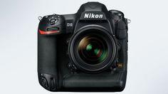 Nikon D5 la nueva joya de la corona ve la luz con muchas novedades