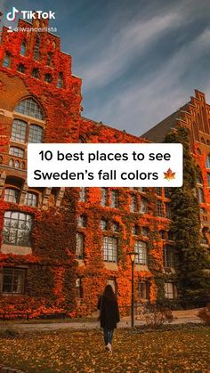 Beautiful Places To Travel, Cool Places To Visit, Visit Sweden, Stockholm Travel, Stockholm Sweden, Sweden Travel, European Tour, Autumn Photography, Travel Aesthetic