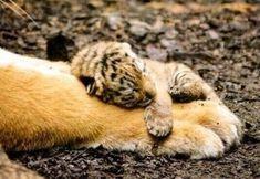 That's me hugging myself