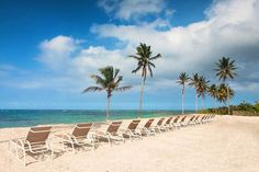 Nisbet Plantation Beach Club is the Caribbean's only historic plantation inn on the beach. Caribbean Culture, West Indian, Best Resorts, Travel Articles, Travel Deals, Beach Club, St Kitts And Nevis, North America, Ocean