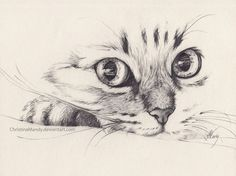 Image de drawing, cat, and art