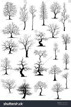 natur drawings Wood burning projects pyrography patterns design 41 Ideas for 2019 Wood Burning Crafts, Wood Burning Patterns, Wood Burning Art, Nature Drawing, Drawing Trees, Drawings Of Trees, Painting Trees, Shadow Painting, Drawing Drawing
