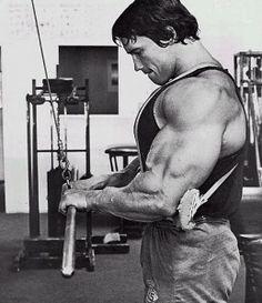 Arnold Schwarzenegger Arm Training