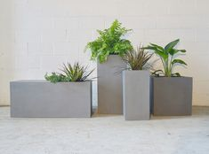 Rectangular Planters, Square Planters, Corporate Office Design, Self Watering Planter, Modern Planters, Backyard Projects, Take A Seat, Midcentury Modern, Greenery