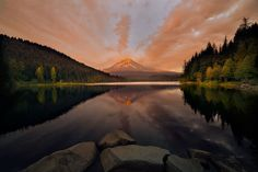 Mt Hood from Trillium by Frank Delargy on 500px..... #trees #sky #lake #sunset #reflection #volcano #light #clouds #beautiful #mountain #Oregon #MountHood #TrilliumLake