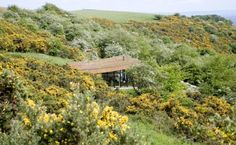 Natural Retreats eco-lodges, eco-travel in UK, UK National Parks, Lake District National Park, North York Moors National Park, Yorkshire Dales National Park, eco-getaways in the UK