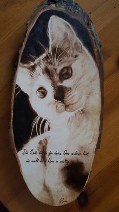 #pyrography #pyrographyartist #woodburning #petportrait #cat