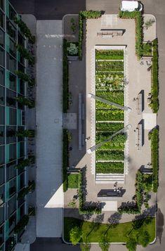 Novartis Campus - Physic Garden