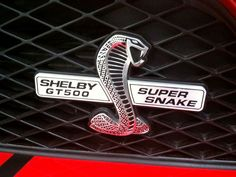 Mustang supersnake wallpaper Ford Mustang Shelby Cobra, Mustang Gt500, Mustang Super Snake, Hood Ornaments, Car Detailing, Muscle Cars, Cool Cars, Dream Cars, Classic Cars