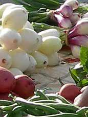 Bloomington Farmers Market - Outdoor Saturdays June - October, Indoor Saturdays November - December