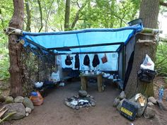 Building Shelter in Woods   woods: shelter