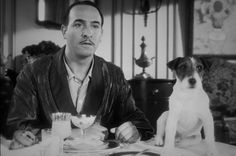 Uggie - The Artist I love this cute little dog to me he was the real star in this movie