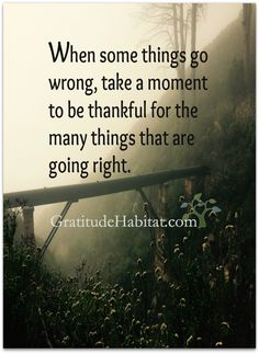 Be thankful for the things that are going right.  Visit us at: www.GratitudeHabitat.com  #gratitude #thankful