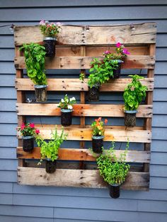 My diy wooden pallet wall planter... Have a mix of my favorite herbs and flowers.