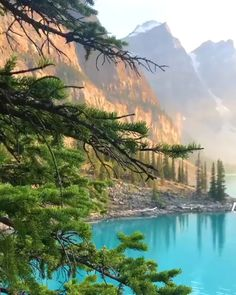 Beautiful nature at Moraine Lake ❤️ 👉🏻 Tag someone to see this ↴ ⠀⠀⠀⠀⠀⠀⠀⠀⠀⠀ ⠀⠀⠀⠀⠀⠀ ⠀⠀Tag someone !👥 Likes 💕 & comments ⌨ ⠀ ⠀⠀⠀⠀⠀⠀⠀⠀⠀⠀⠀… Beautiful Places To Travel, Cool Places To Visit, Places To Go, Banff National Park Canada, Banff Alberta Canada, Jasper National Park, Nature Photography, Travel Photography, Banff Photography