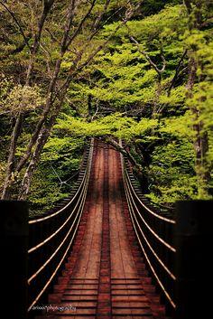 Shiomibashi Bridge Ibaraki, Japan by arixxx+++ Ibaraki, Oh The Places You'll Go, Places To Travel, Places To Visit, Covered Bridges, Pathways, Japan Travel, Wonders Of The World, Land Art
