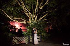Amanda and Dylan's Wedding Celebrations – Royal Botanic Gardens