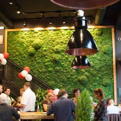 Ресторан во Франкфурте.Интерьер включает в себя 17 кв.м стен из мха.
