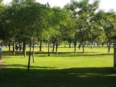 Live, Laugh, Love!: Αθλητικό Πάρκο Αη Γιώργη, Τρίκαλα