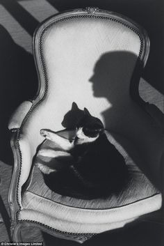 Henri Cartier Bressons - Cat Ulysses and Martine's shadow - 1988