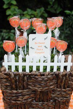 Sweet Pumpkin Patch